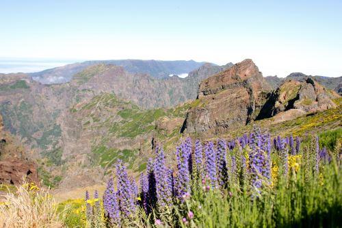 Madeira, Portugal.